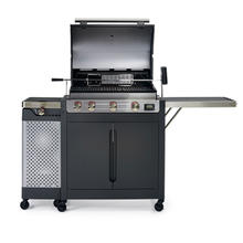 BARBECOOK GAS CUISSON 223 9420 000