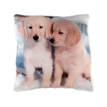 Coussin Chiots
