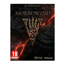 Spel The Elder Scrolls Online: Morrowind voor PS4